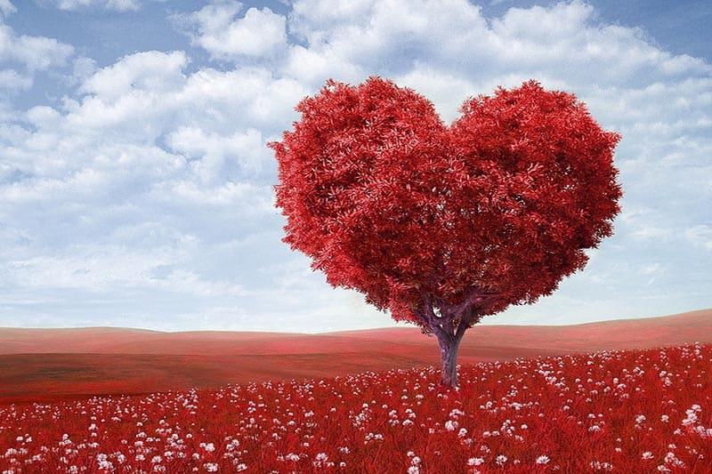 San Valentino è marketing